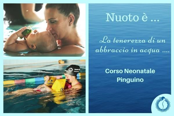 CORSO NEONATALE PINGUINO .. l'emozione dei primi passi in acqua