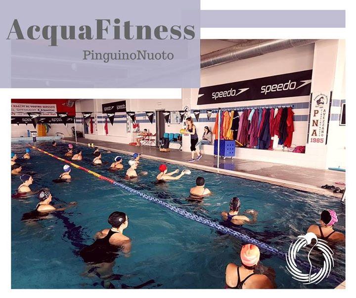 Vieni a scoprire il mondo del fitness in acqua #ACQUAFITNESSPINGUINO