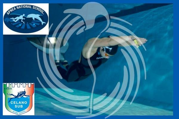 Le novità non ci spaventano …ci Valorizzano ! NUOTO PINNATO Pinguino Nuoto in collaborazione…