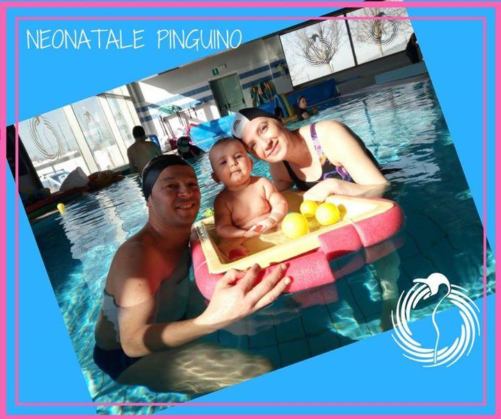 Corso Neonatale Pinguino: Il un appuntamento in