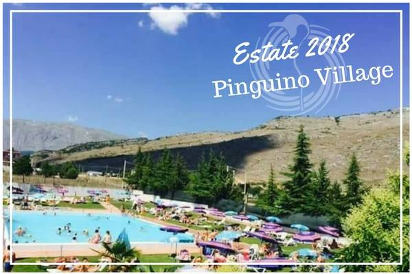 PINGUINO VILLAGE 2018. Scopri le imperdibili promo riservate a te su #estate #pinguinovillage #estateconnoi