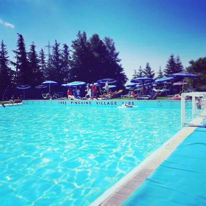 Programma della giornata: #tuffo in #piscina ️️ #pinguinonuoto #village #estate2018 #pictureoftheday #instagood #instalike #likeforfollow…