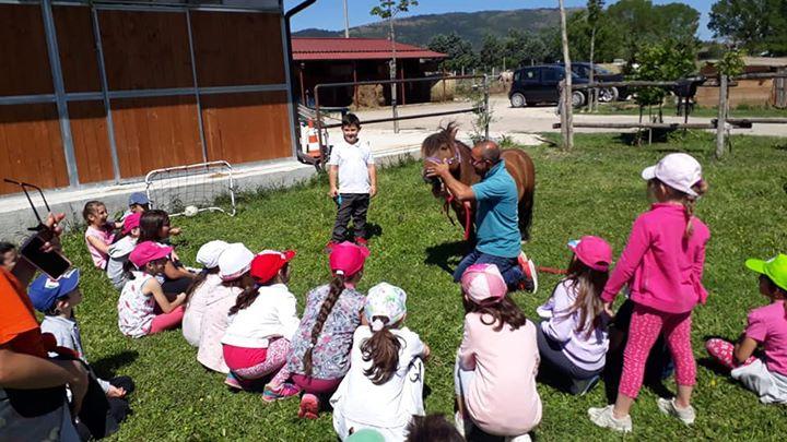 CENTRO ESTIVO Pinguino Village Avezzano Scoprire la natura divertendosi!!! Piccoli pinguini a cavallo:giornata in…