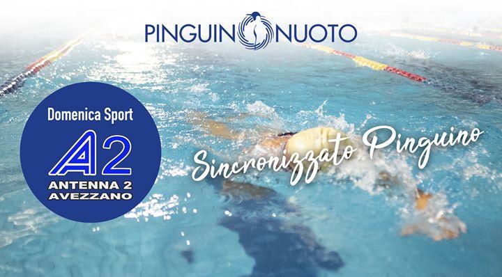 """""""Sincronizzato #Pinguino"""" I progressi del sincronizzato Pinguino Nuoto, ne parliamo con la Responsabile del…"""