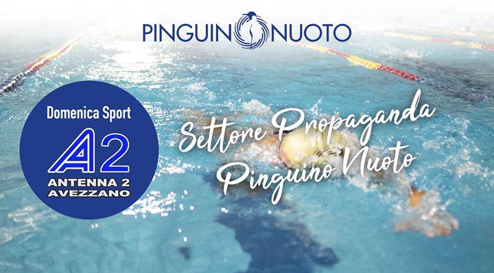 Settore Propaganda Pinguino Nuoto Settore Propaganda Pinguino Nuoto. Ne parliamo con il responsabile del…